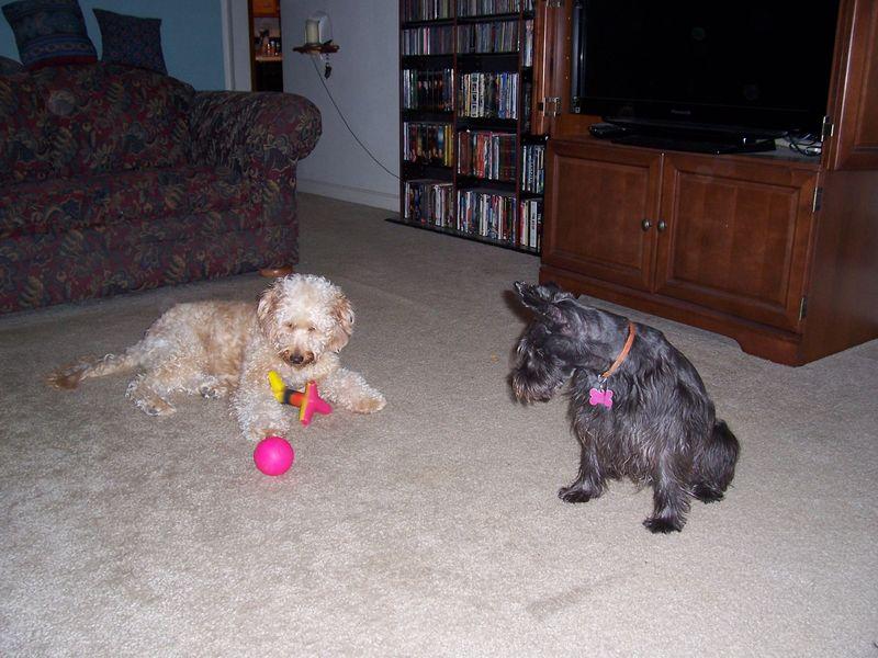 Murphy's Visit Sept 2010 027