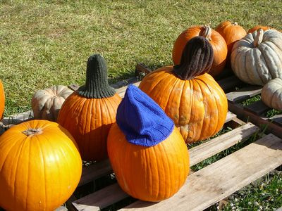PumpkinHats